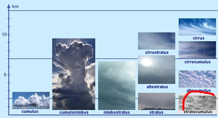 oblaky-v-scheme-stratocumulus